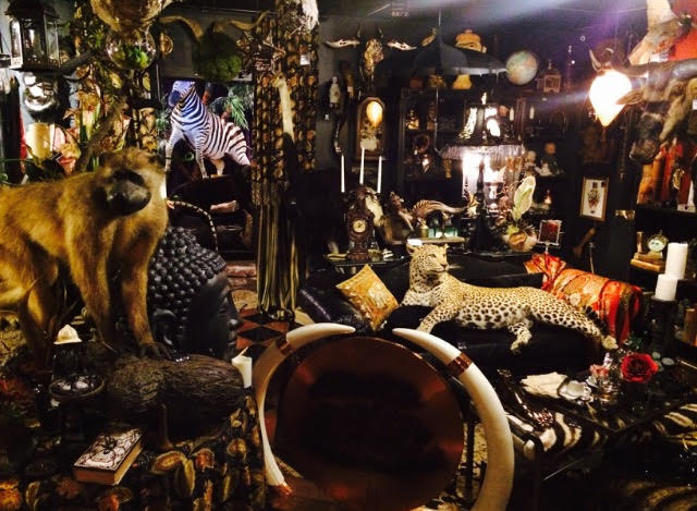 Buy Hot Tub >> The Quirkiest Shops In Houston, Texas