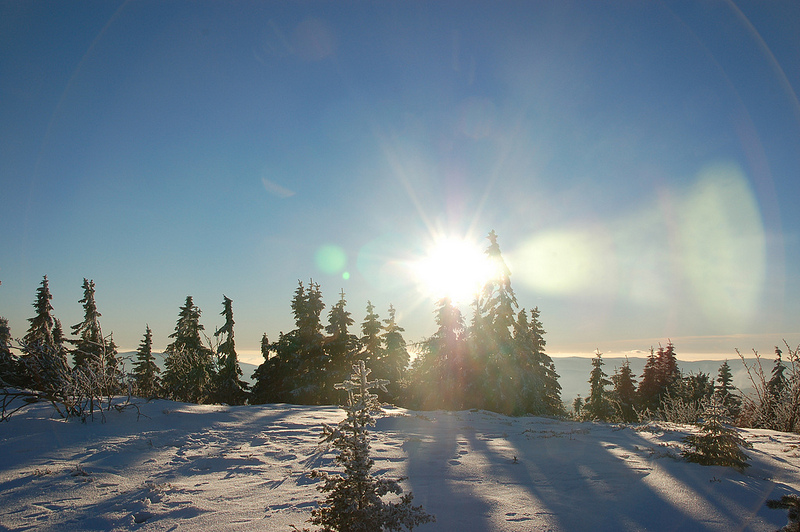 DSC_9887 [Arber Skiing] |© Ralf Peter Reimann/Flickr