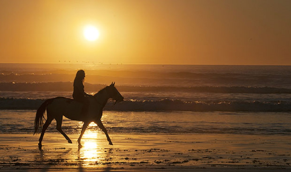 Horses hippies and pine clad peaks ibiza unearthed horse riding on the beach at sunset maureen clarkflickr sciox Choice Image