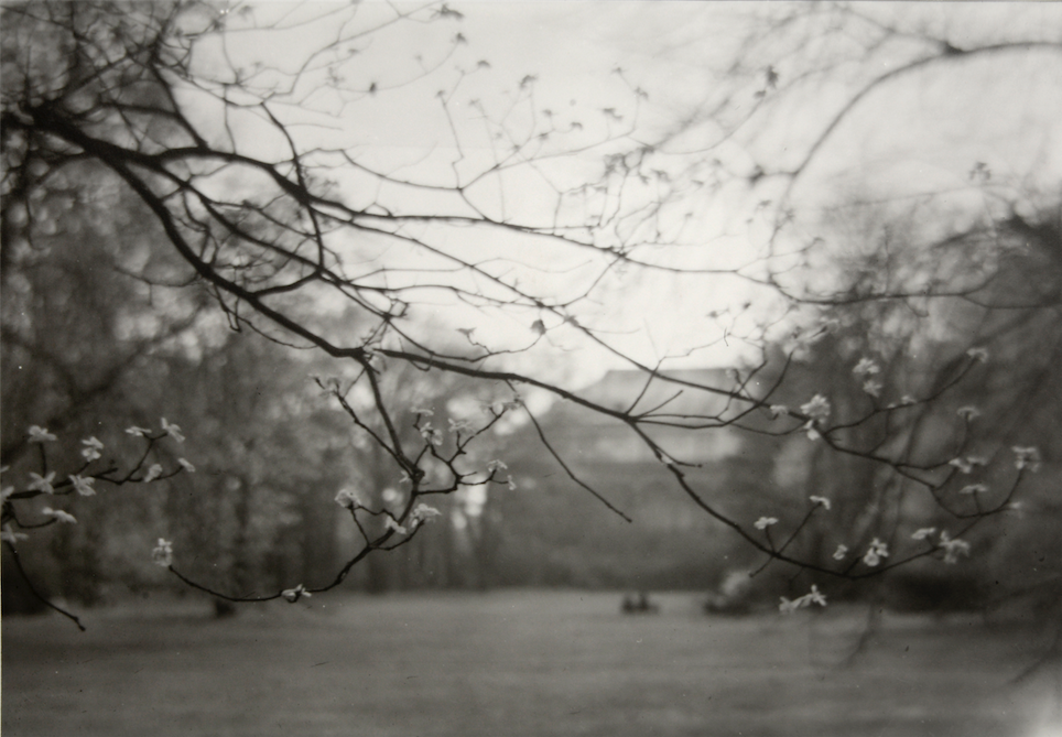Courtesy of Beetles + Huxley/Osborne Samuel © Josef Sudek
