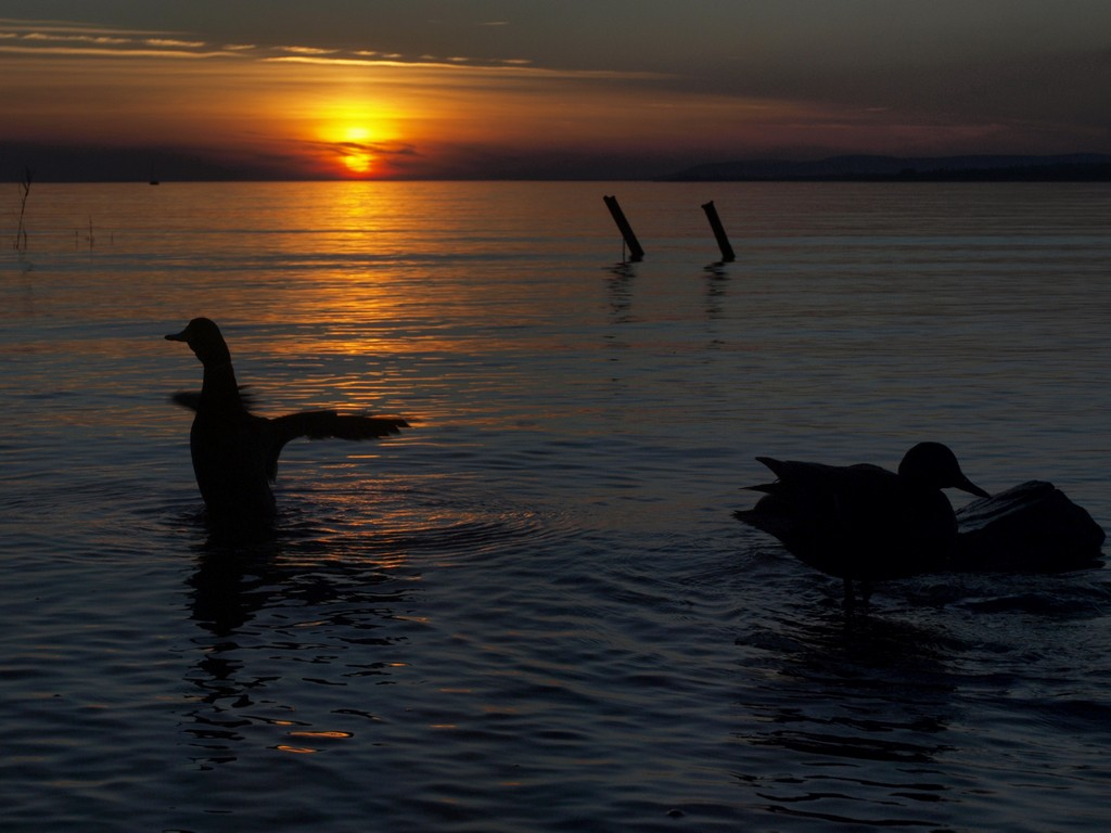 Lake Balaton at Tihany/Photo By Author
