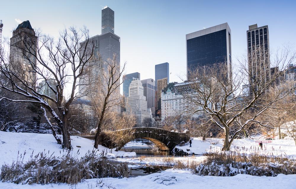 Central Park gapstow Bridge with city skyline in background © Eileen_10 / Shutterstock