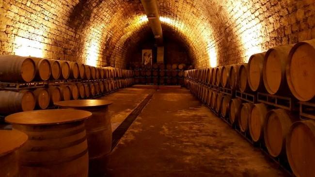 Carmel Winery © Tirza Mahalla