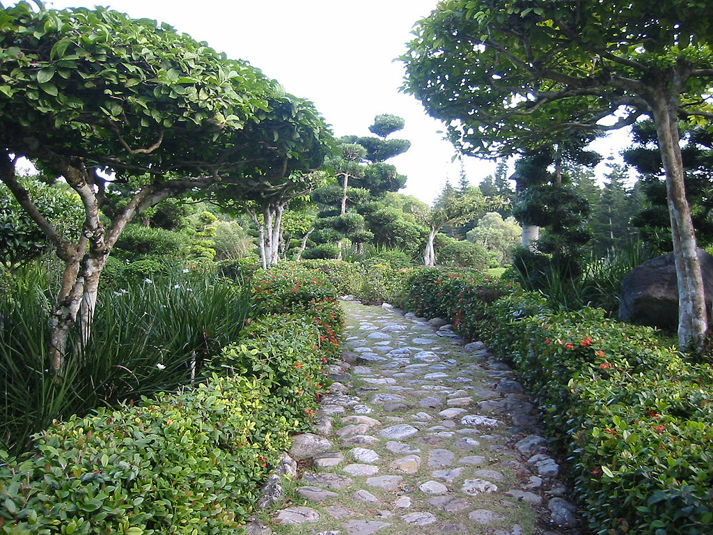 The top 10 things to do and see in santo domingo for Vivero el botanico horarios
