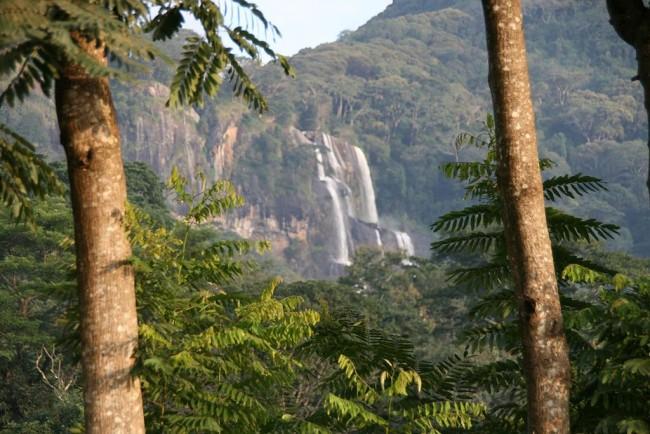 Udzungwa Mountains National Park, Tanzania © Marc Veraart/Wikicommons