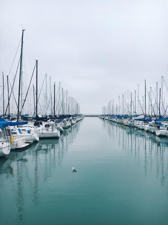 South Beach Marina © Sasha Zvereva