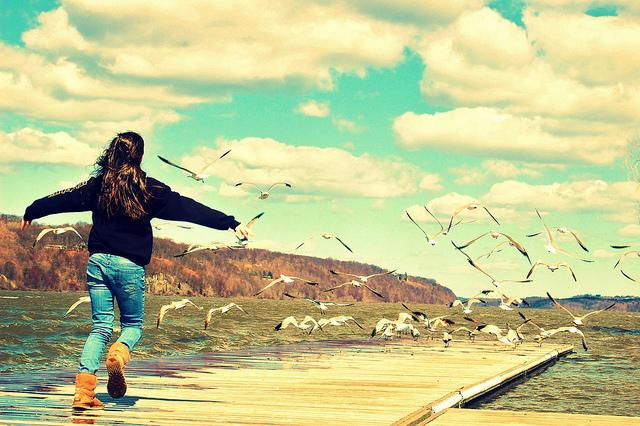 Fly Away   © Ben Rea/Flickr