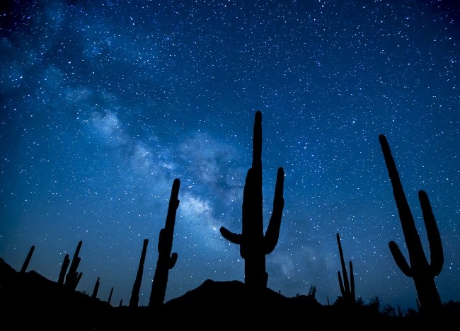 Sonoran desert at night © Bureau of Land Management/Flickr