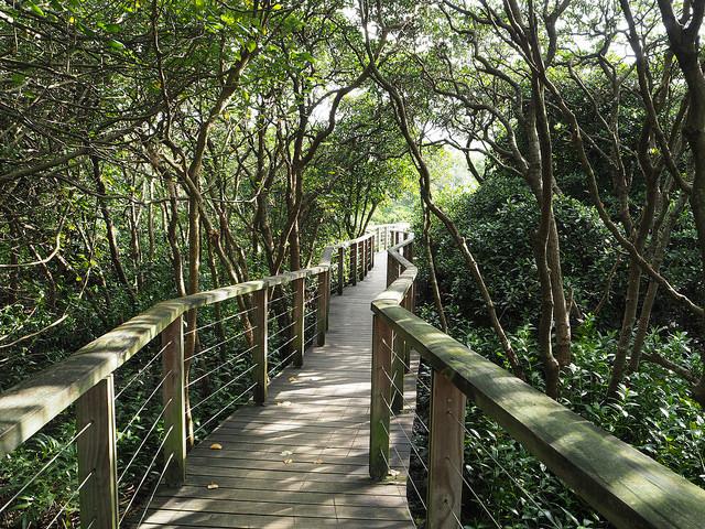 Trail route © Eric Li|Flickr