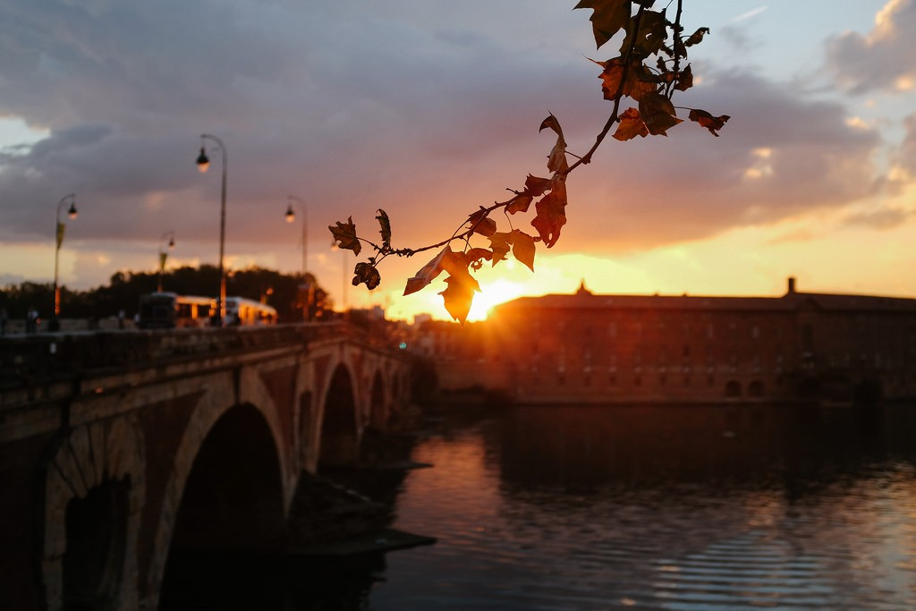 The Best Local Restaurants In Toulouse France