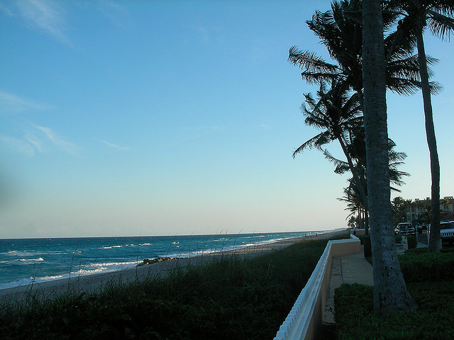 Palm Beach I © Julia Rubinic/Flickr