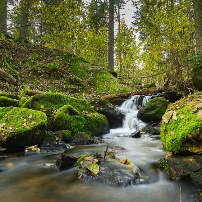 Åva, Tyresta nationalpark © Hampus/Flickr