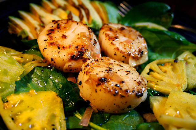 Caramelized Scallops | © Matt Baume/Flickr