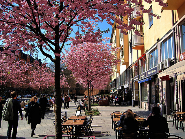 Spring blossoms in Sodermalm I © Let Ideas Compete/Flickr