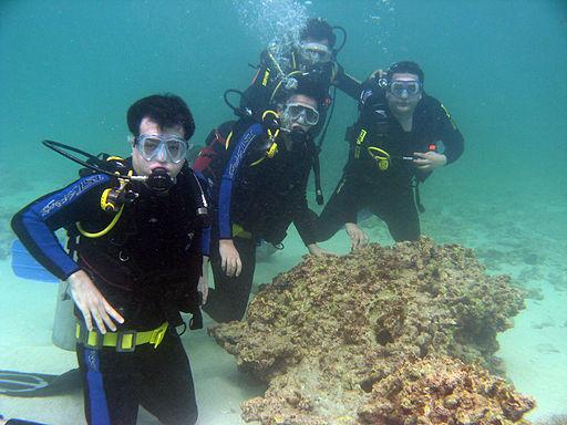 Scuba Diving Kish Island | © Mahdian/Wikicommons