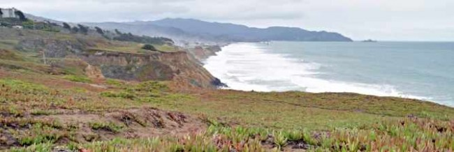 Top 10 Things To Do And See In Daly City San Mateo County