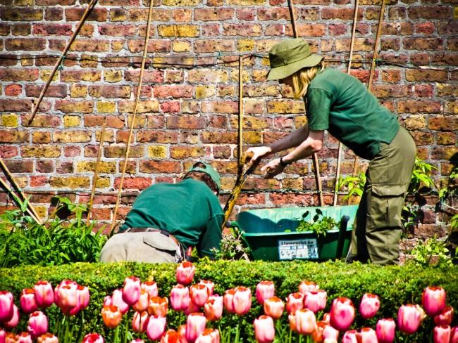 Golders Hill Gardeners | ©Garry Knight/Flickr