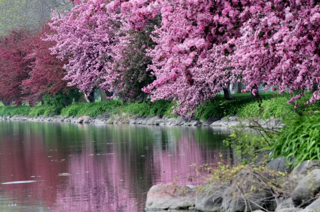 Springtime in Fond du Lac, WI | © jeffery wright/Flickr