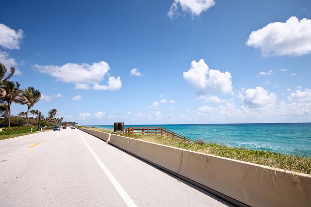 Palm Beach I © Roozbeh Rokni/Flickr