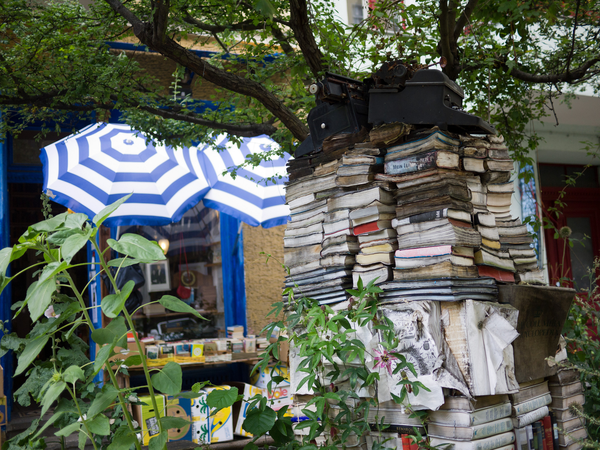 Berlin Outdoor Book Shelf  ©R4vi/Flickr