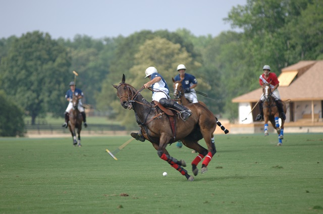 New Bridge Polo Club: Part Of Aiken's Famous Equestrian Scene | Courtesy Visit Aiken SC
