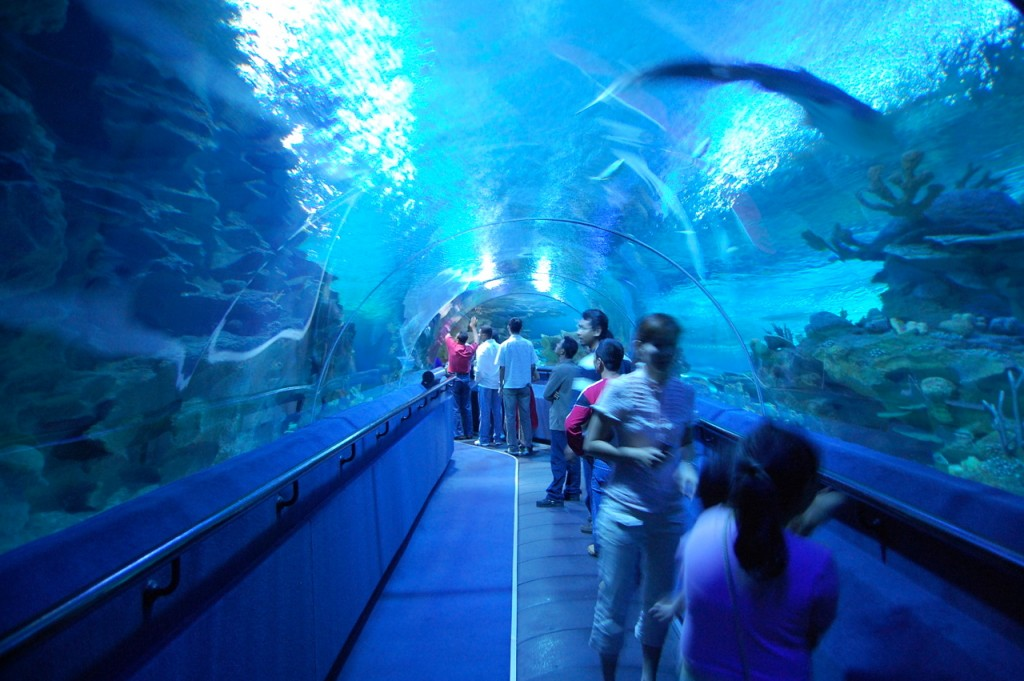 Aquaria KLCC |©chleong/Flickr