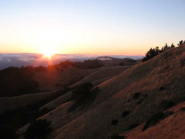 12 Ways To Enjoy Mount Tamalpais State Park