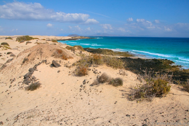 Corralejo natural park | © Canary Islands Photo/Flickr