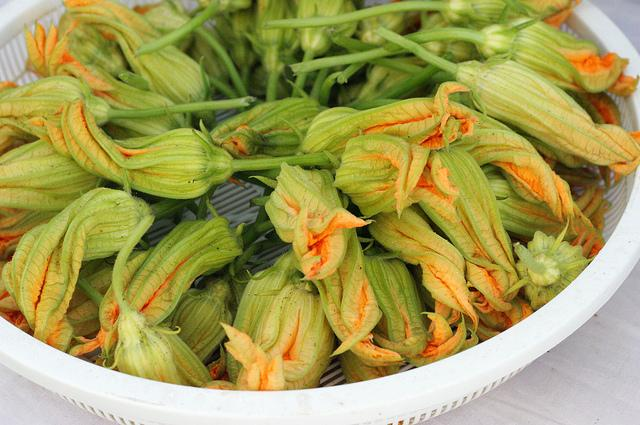 Courgette Flowers | © Maggie Hoffman/Flickr