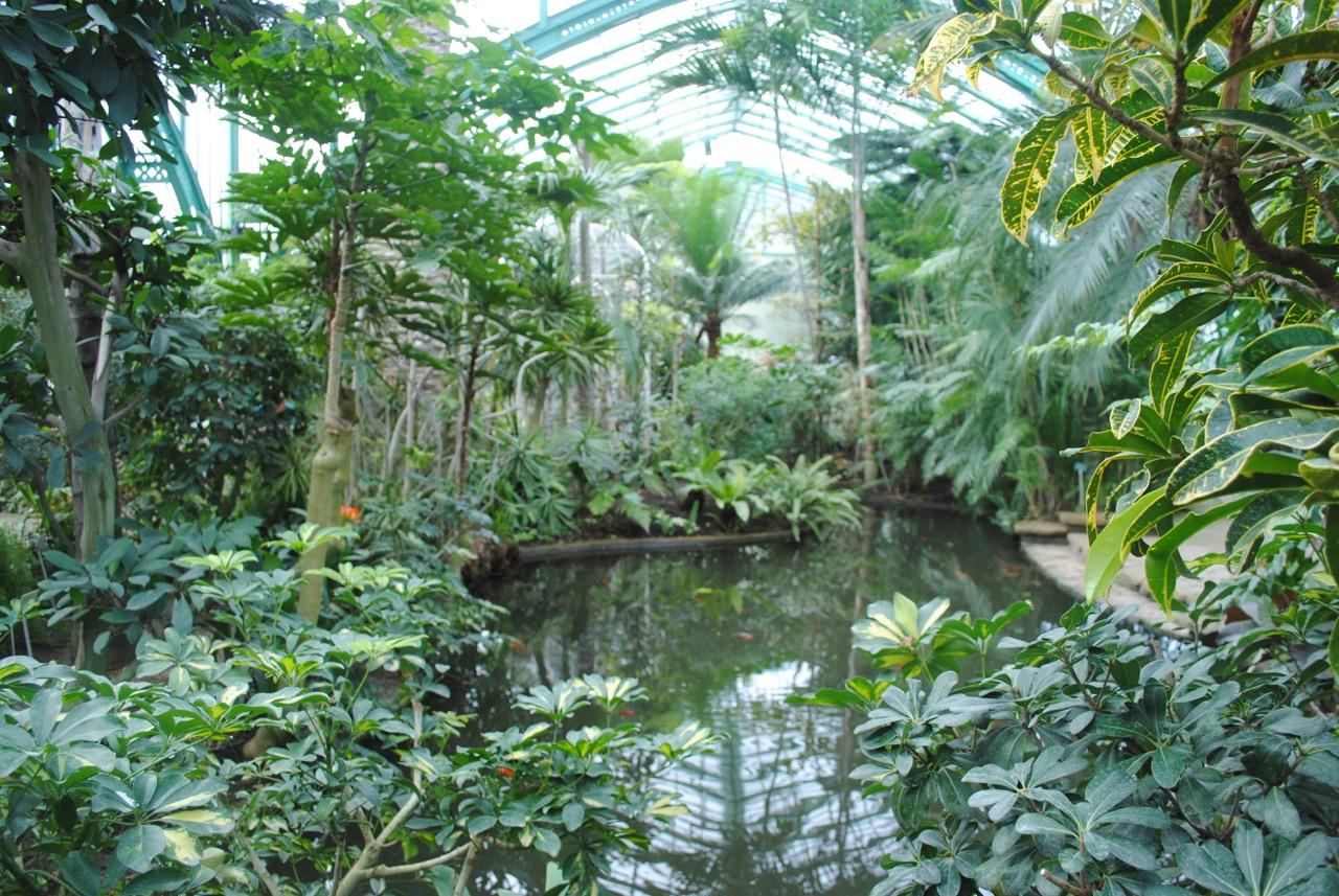 Indoor gardens in paris urban retreats for Indoor botanical gardens