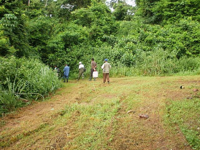 Image result for bia national park