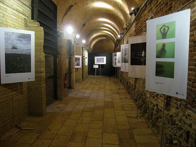 Exhibition at Espace EDF Bazacle | ©Muséum de Toulouse/Flickr