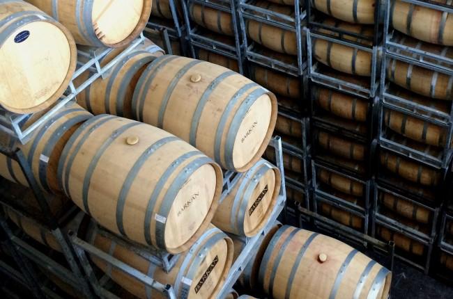 Barkan Winery © Isaac Kohane