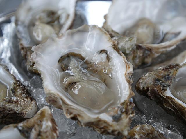 Oyster | ©Swamibu/Flickr