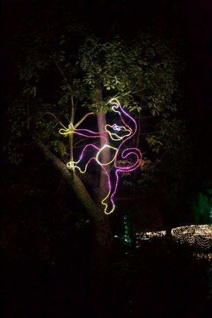 LA Zoo Lights Decor   © Channone Arif