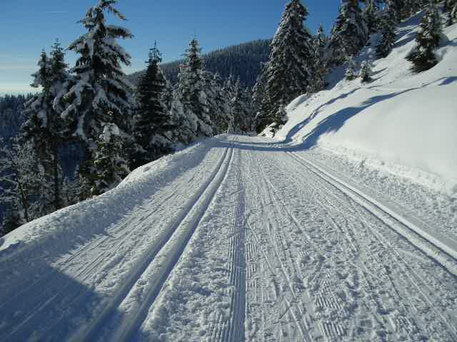 Groomed ski trails for cross-country| © Michel Sachs/WikiCommons