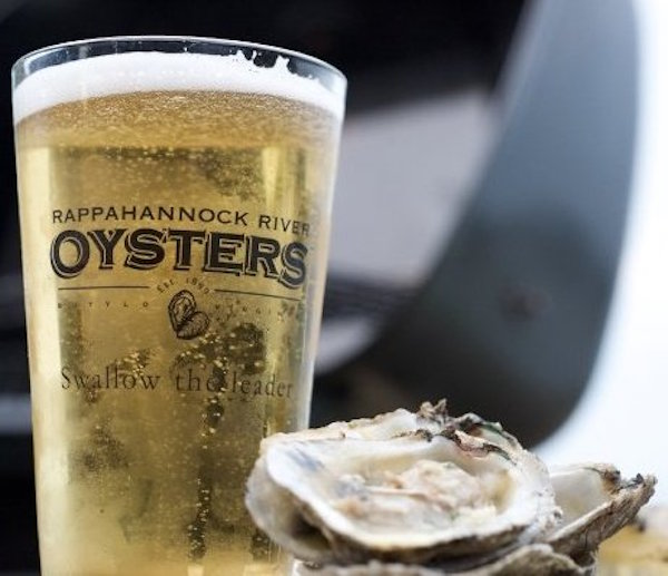 Oysters and beer | Courtesy of Rappahannock River Oyster Co.