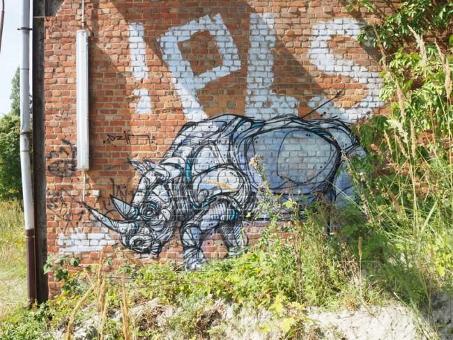 A melancholy rhinoceros | Courtesy of Dzia