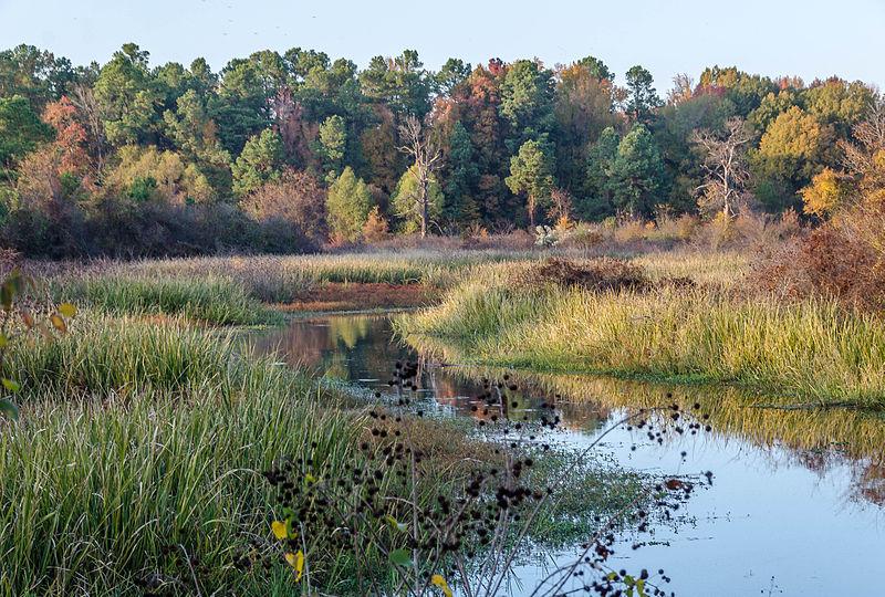Landscape around Pine Bluff | Ⓒ Keith Yahl/Flickr