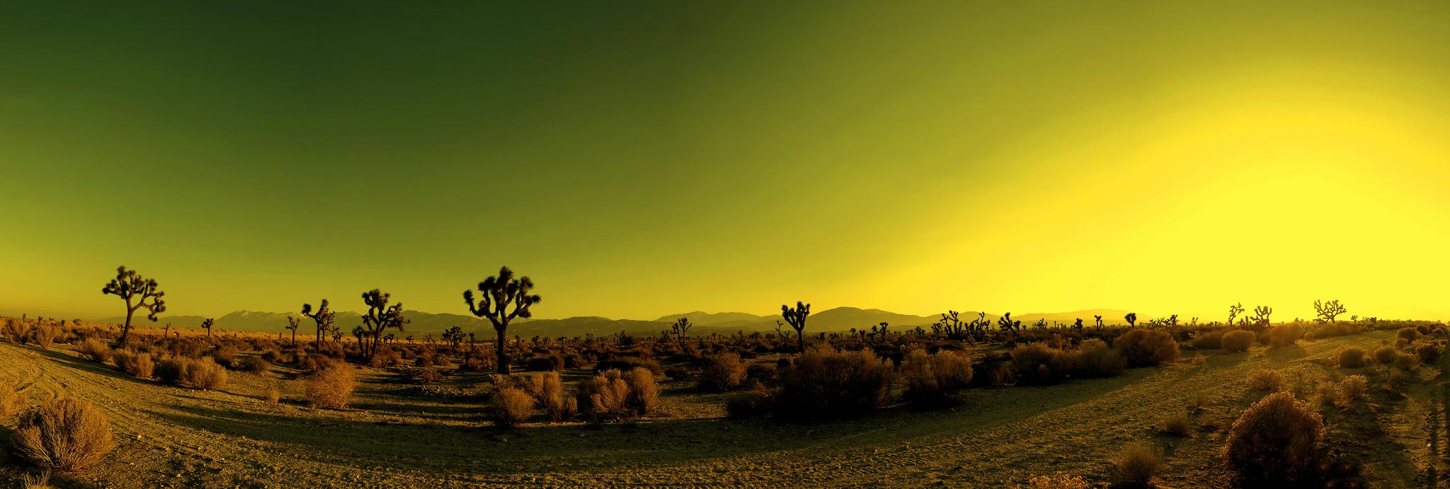 Landscape around Palmdale | Ⓒ Joseph Voves/Flickr