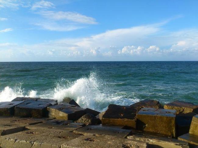 Mediterranean Coast Alexandria│© Mohamed Hamdy / Pixabay