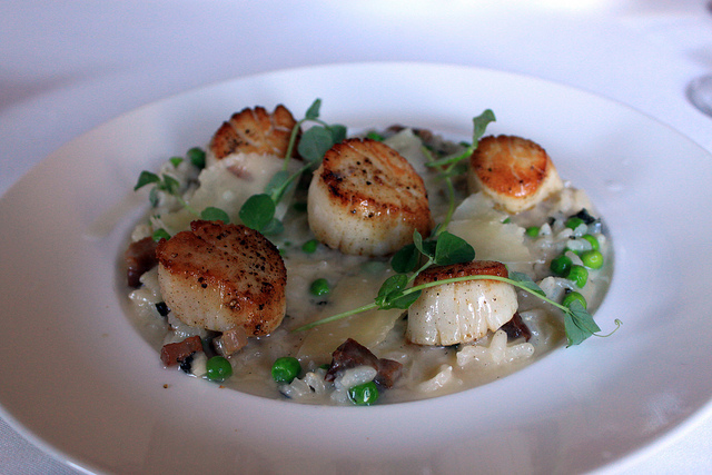 Scallops | © Peter Bond/Flickr