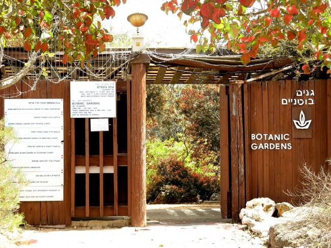 TAU Botanical Garden ǀ © Tomer A /Wikicommons