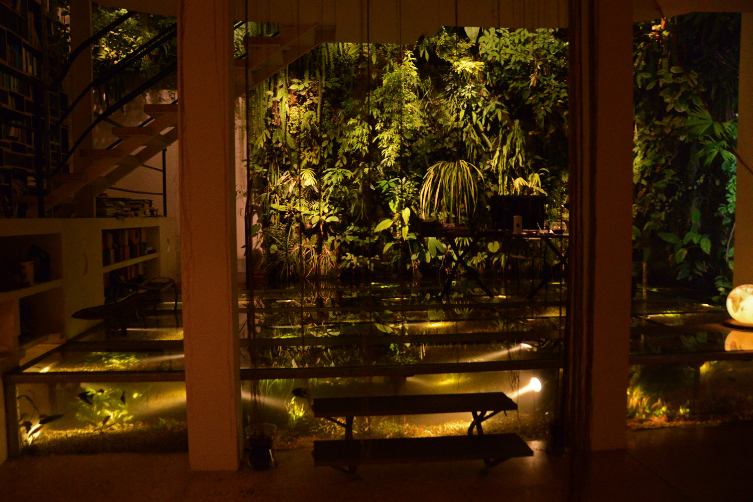Vertical Garden and Christarium at night, Patrick's home | Courtesy of Patrick Blanc