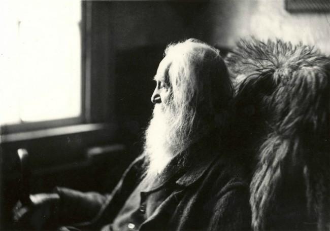 Walt Whitman - em Camden, 1891 | © Marcelo Noah/Flickr
