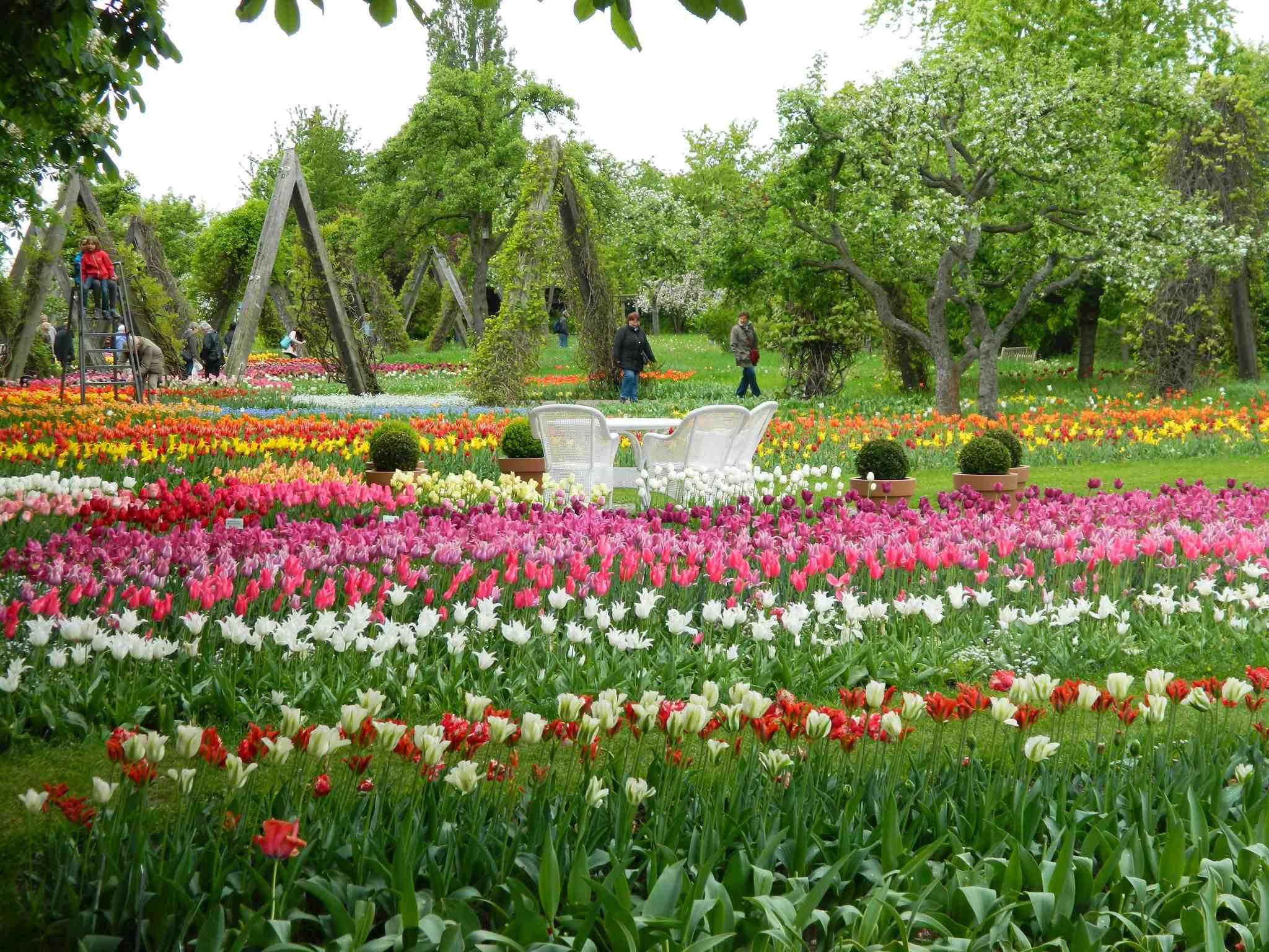 Britzer Garten 348 | © Manu / Flickr
