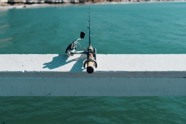 Fishing | © Jay Mantri