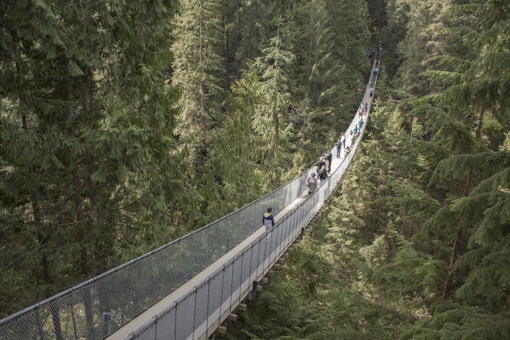 Capilano Suspension Bridge Vancouver © Pixabay