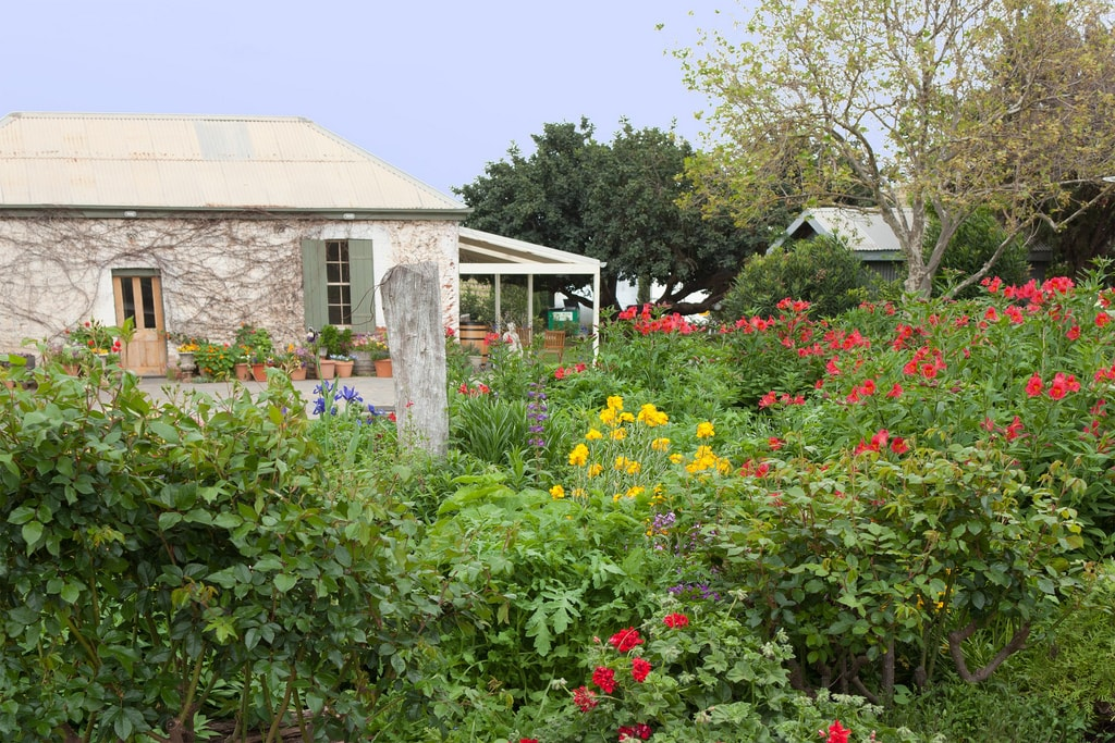 Cottage in McLaren Vale | © Rexness/Flickr