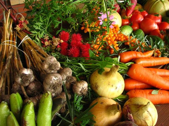 Ecologically-grown vegetables | © Elina Mark/WikiCommons